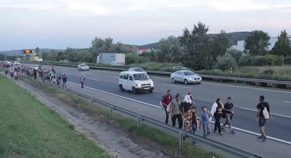dzbzdfbxcv  - O tym się milczy! Polska pobiła rekord w liczbie imigrantów! Zaskakujące dane za 2018 r.